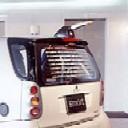 tailcar.jpg